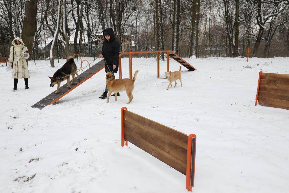 Во Львове открыли еще одну площадку для выгула собак